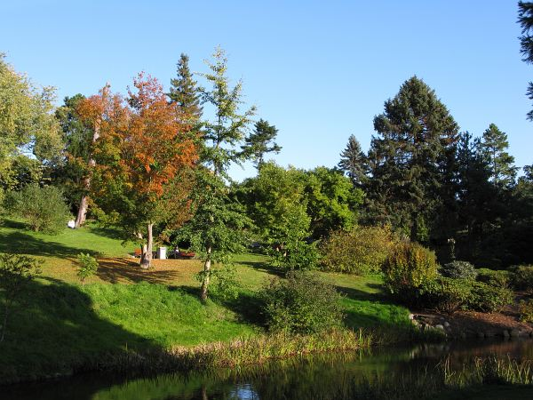 Botanisk Have århus